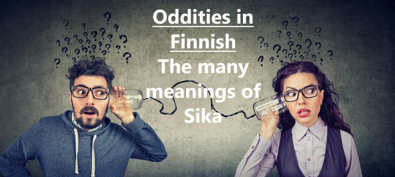 Oddities in Finnish - The many meanings of Sika